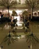 exemplo do serviço de passarela espelhada de vidro Elegance 137x173px